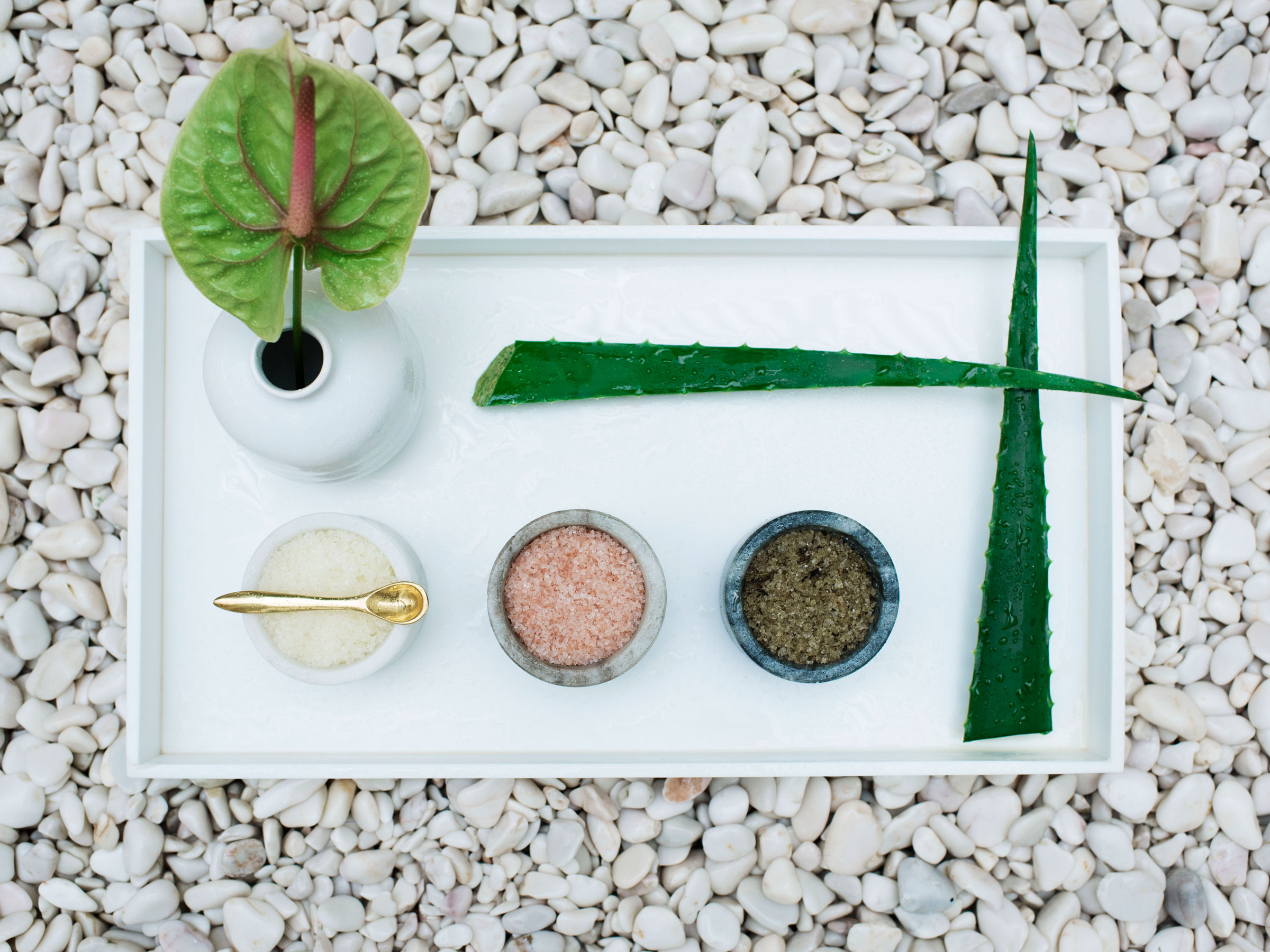 Natural Wellness Ingredients at Our Mexico Spa Resort